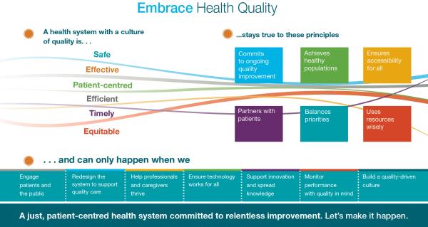 HQO Quality Logic Model